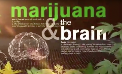 VIDEO: The science of cannabis on the brain.