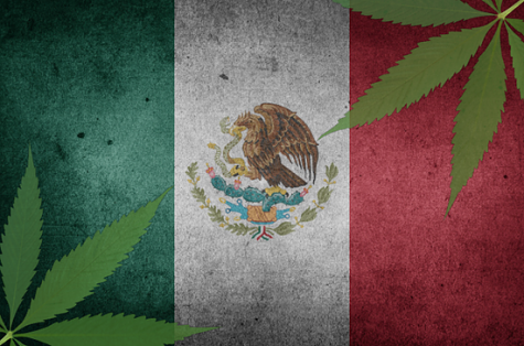 Mexico's lower house passes bill approving cannabis for medicinal use