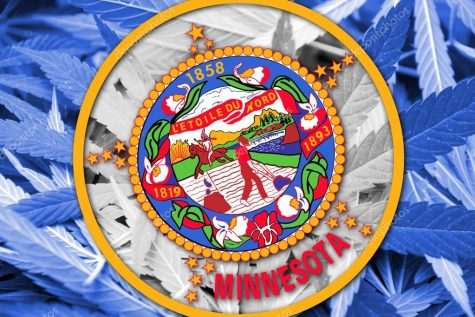 Minnesota adds two more qualifying conditions to medical cannabis program