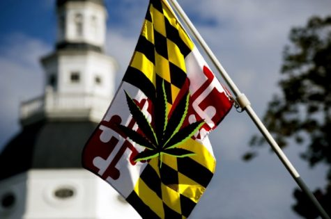 Medical cannabis sales in Maryland topped $96 million in first year
