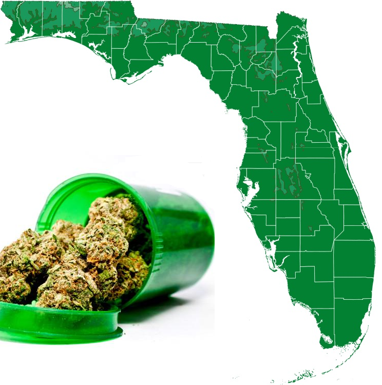 Florida's governor's race is focusing on legalization