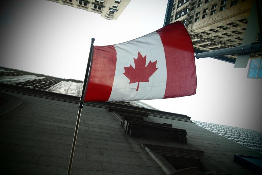 Medical cannabis industry in Canada could be global giant
