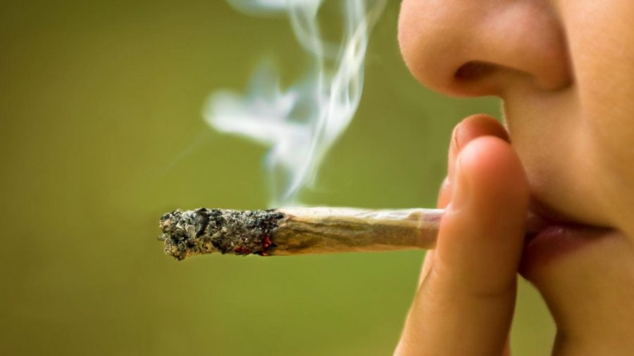 Adolescent cannabis consumption rate lowest in 20 years