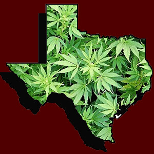 Texas issues first medical cannabis license to CBD producer