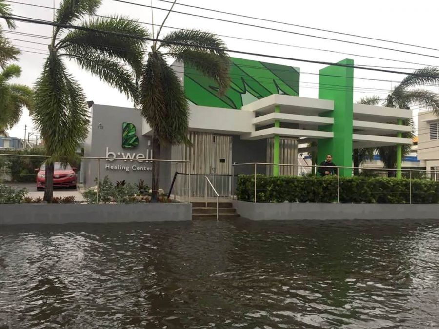 Puerto Rico's medical cannabis industry struggles to recover after hurricane