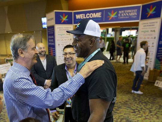 Former NFL players advocate use of medical cannabis, discuss healing benefits