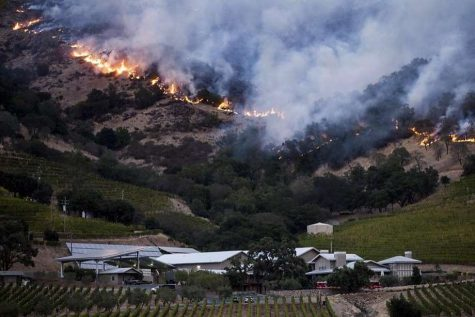 Fires threaten northern California cannabis crops at harvest time