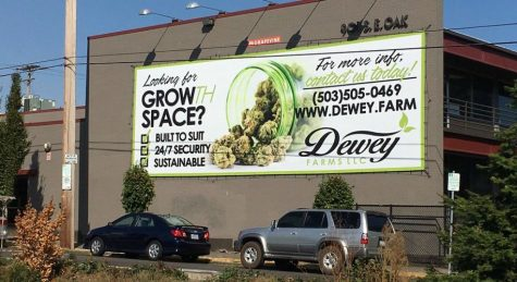 Cannabis ads have little influence on consumption