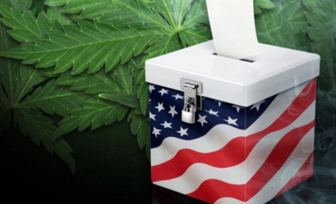 Legalization will not be on the ballot in Arizona this year
