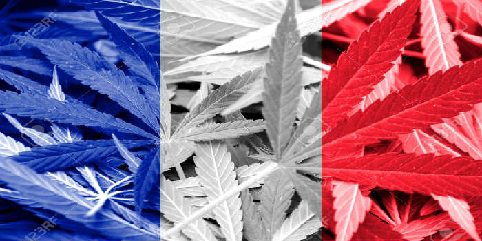 With one of the highest cannabis consumption rates in Europe, France intends to soften laws against cannabis use
