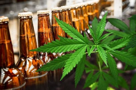 Survey: Cannabis consumption leads to reduced alcohol consumption