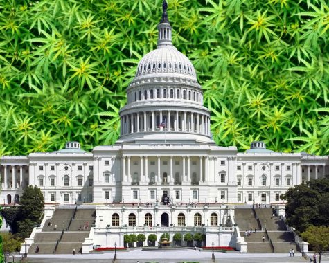 Legal cannabis states ask Congress for legal banking