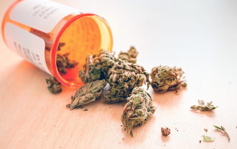 Health insurer announces groundbreaking medical cannabis coverage plan