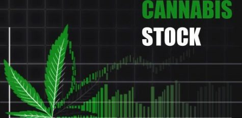http://thefirstnationscanada.com/2018/02/12-hottest-cannabis-stocks-trading-today-in-the-canadian-market-feb-22/