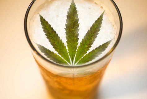 Cannabis-infused beer goes on sale at UK brewery