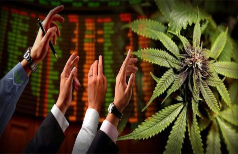 Cannabis stock surges 148 percent after WHO's international drug treaty recommendations