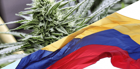 Colombia is piquing the interest of Canadian cannabis investors