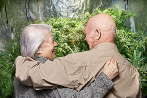 Israeli study proves cannabis is safe for elderly patients