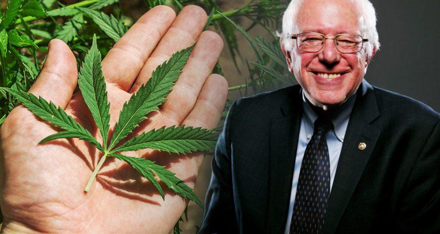 http%3A%2F%2Fmedicalsecrets.com%2Fblog%2Fbernie-sanders-petition-will-help-legalize-weed-end-war-drugs%2F