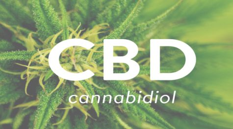 Relieving Anxiety and Pain with High-CBD Cannabis Strains