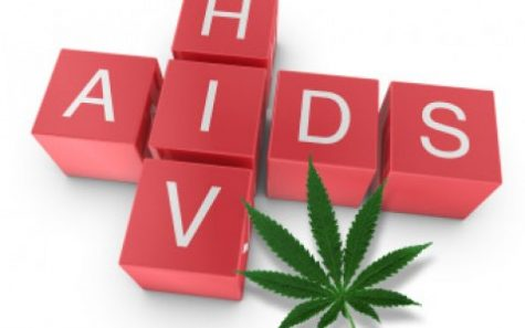 MSU researchers discover how cannabis can be used to sustain mental stamina in HIV patients