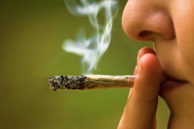 http://sloccba.org/faq/25-odd-facts-about-cannabis/
