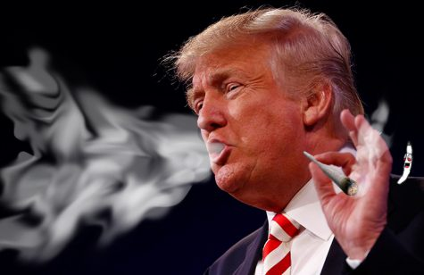 Donald Trump wants to leave cannabis enforcement up to states