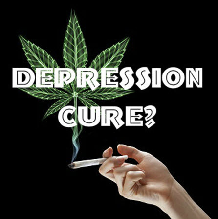 Washington State University researchers recommend one puff of cannabis for depression