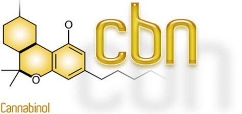 https://www.medicalcannabisdispensary.co.za/what-is-cannabinol-cbn/