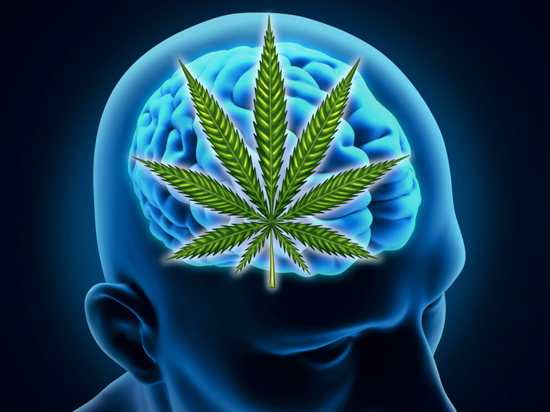 Study: 61 percent of Parkinson's patients experience symptomatic relief after using medical cannabis