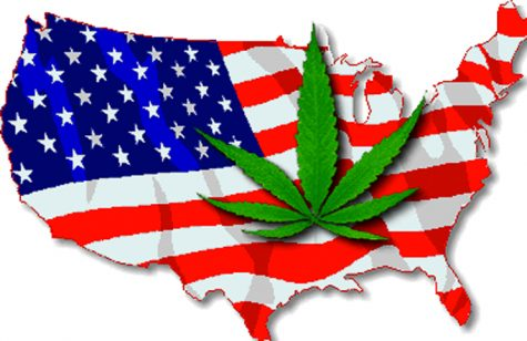 The United States could face a dilemma if cannabis is legalized at federal level