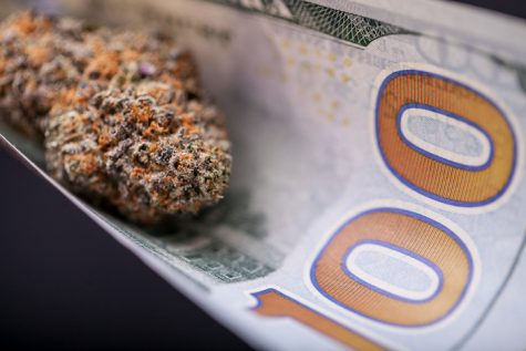 Data indicates Colorado's legal weed industry is on-track to earn billions of dollars this year