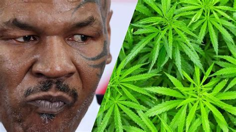 Mike Tyson announces cannabis deal to bolster Brit-inspired tourism in Antigua and Barbuda