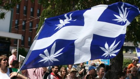 Quebec's new cannabis law: What does it entail?
