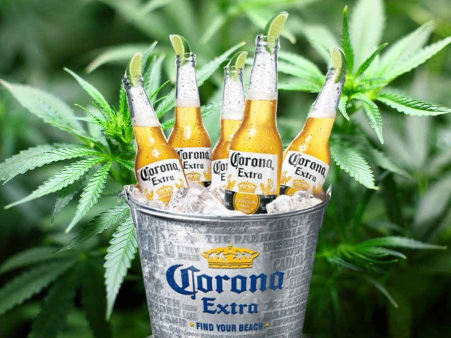 Constellation Brands invests $4 billion in Canopy Growth and stocks skyrocket