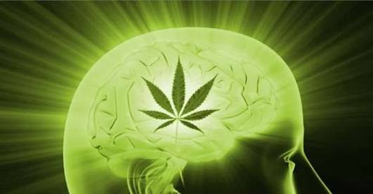 UCSD researchers will conduct study on cannabis to treat Essential Tremor (ET)