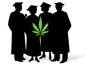 Cannabis study: Consumption rates among college-aged youth hits 30-year record