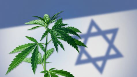 Business deals with Canada contribute to Israel's status as pioneer in medical cannabis R&D