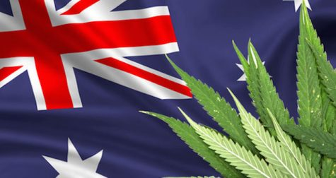 Australian report weighs in on diversion tactics for cannabis offenses
