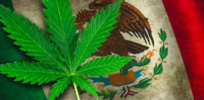 https%3A%2F%2F420intel.com%2Farticles%2F2018%2F11%2F02%2Fmexican-supreme-court-declares-prohibition-recreational-cannabis