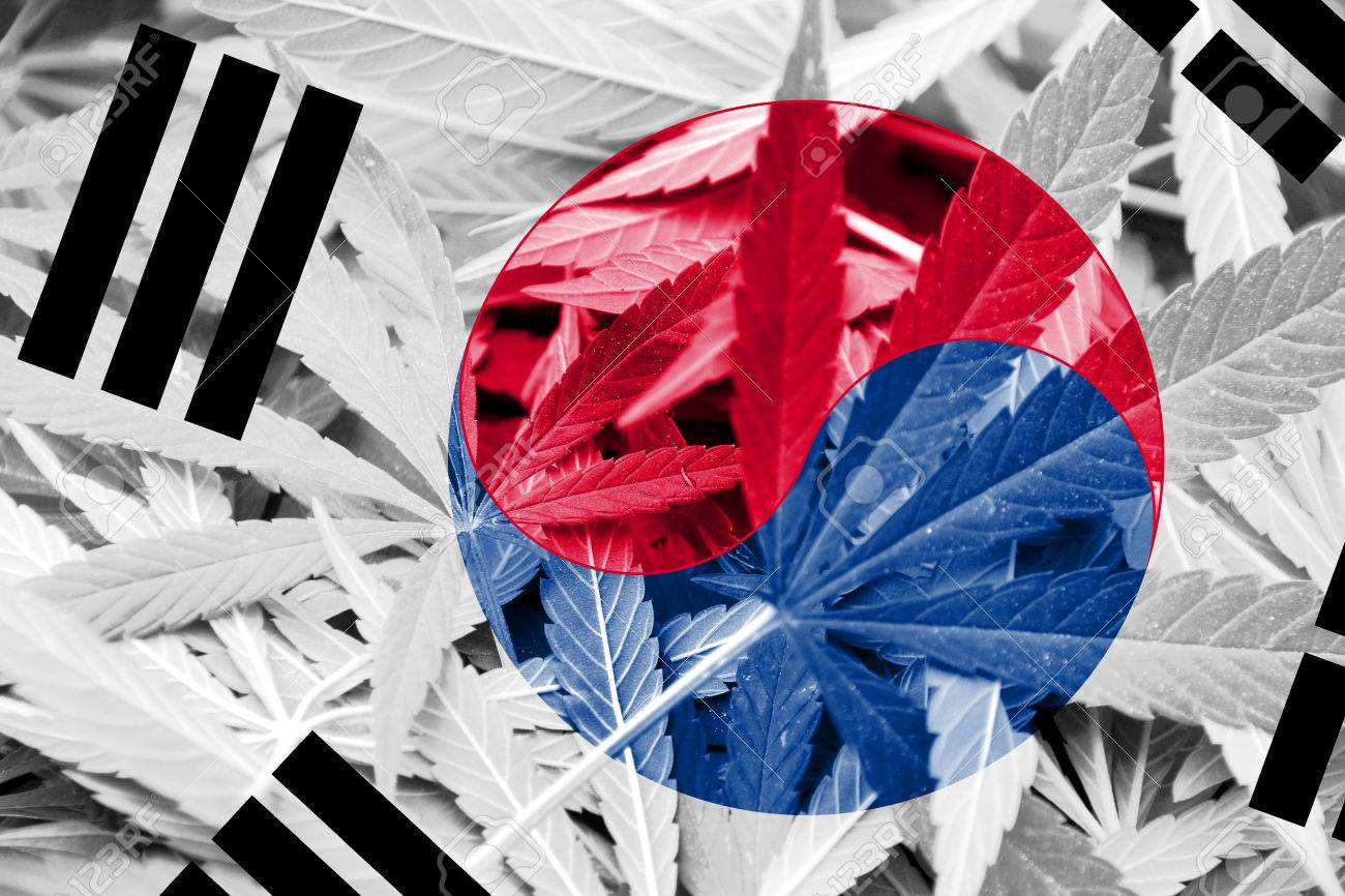 South Korea Flag on cannabis background. Drug policy. Legalization of marijuana