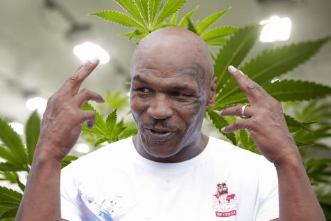 Former heavyweight champion Mike Tyson to host cannabis-themed music festival
