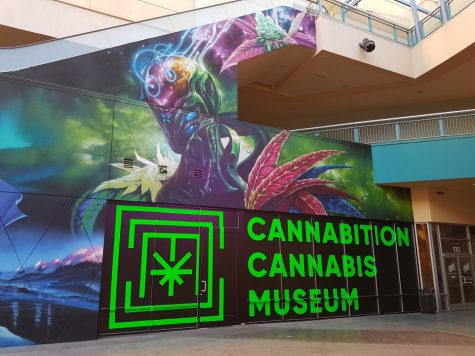 Visiting Vegas? Don't forget to see the world's largest bong inside Cannabition