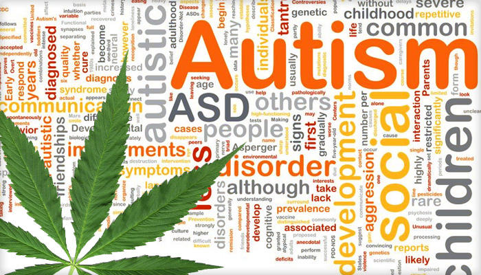 Study reveals connection between cannabinoids and autism