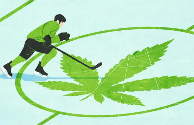 https://dankr.ca/uncategorized/nhl-alumni-team-up-with-cannabis-company-for-concussion-study