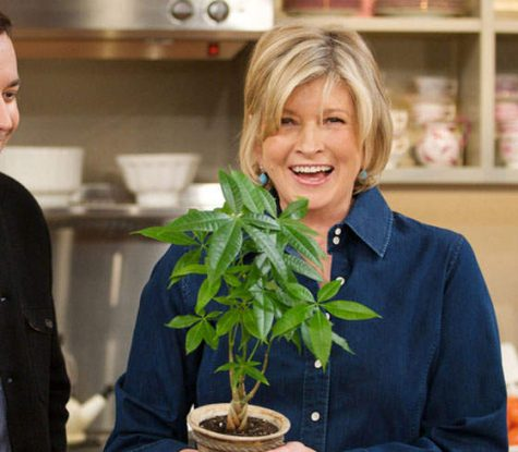 Martha Stewart's new favorite ingredient is cannabis
