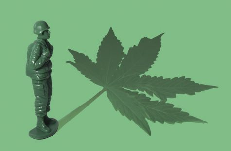 Military veterans organizations press congress on medical cannabis research
