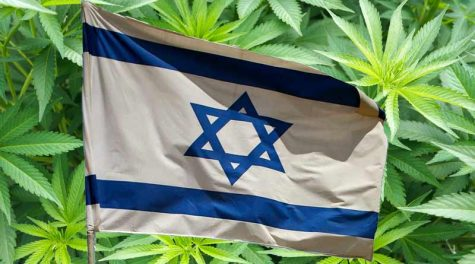 Cyprus parliament gives green light for medical cannabis