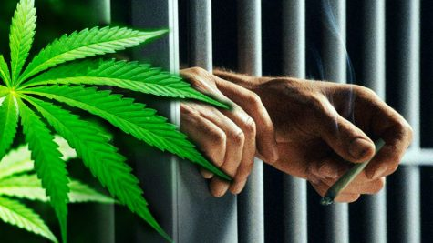 Updated medical cannabis law in New Mexico could grant inmates access to weed