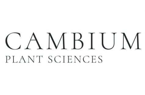Supreme Cannabis launches a cannabis genetics company Cambium Plant Sciences